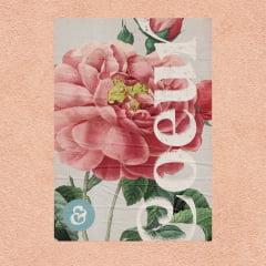 Kit de Lambe Lambe Floral